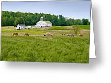 Farm Life Greeting Card by Guy Whiteley