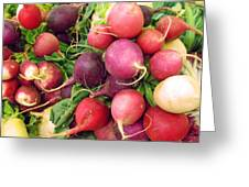 Farmers' Market Radishes Greeting Card by Jean Hall