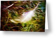 Feather From Heaven Greeting Card by Michelle Frizzell-Thompson
