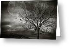 February Tree Greeting Card by Taylan Soyturk