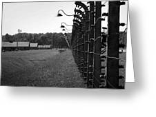 Fence Of Death Greeting Card by Mountain Dreams