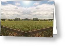 Field And Sky, South England Greeting Card by Vast Photography