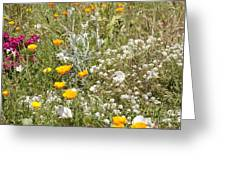 Field Of Flowers Greeting Card by Artist and Photographer Laura Wrede