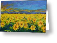 Field Of Sunflowers 2009 Greeting Card by Piotr Wolodkowicz