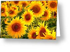 Field Of Sunflowers Greeting Card by Lanjee Chee