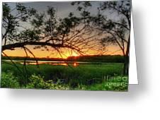 Fiery Swamp Sunset Greeting Card by Deborah Smolinske