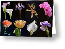 Fine Art Flower Photography Greeting Card by Juergen Roth
