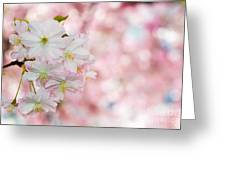 Finest Spring Time Greeting Card by Hannes Cmarits