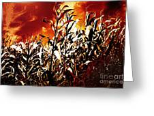 Fire In The Corn Field Greeting Card by Gaspar Avila