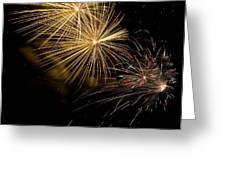 Fireworks 20 Greeting Card by Sandy Swanson
