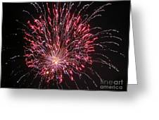 Fireworks For All Greeting Card by Terry Weaver