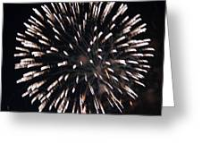 Fireworks Series X Greeting Card by Suzanne Gaff