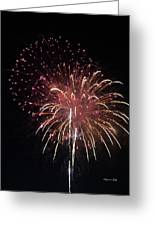 Fireworks Series Xiv Greeting Card by Suzanne Gaff