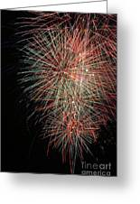 Fireworks6500 Greeting Card by Gary Gingrich Galleries