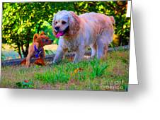 First Anniversary Image Angel And Chika Greeting Card by Tina M Wenger