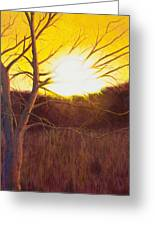 First Sunset Of Spring Greeting Card by Garry McMichael