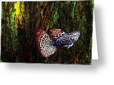 Fish Kingdom Colors  Greeting Card by Mario  Perez