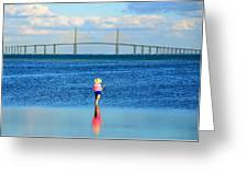 Fishing Tampa Bay Greeting Card by David Lee Thompson