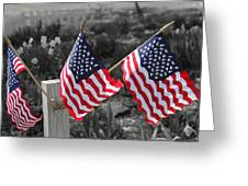 Flags Greeting Card by Mary Burr