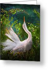 Flamboyant Egret Greeting Card by Melinda Hughes-Berland