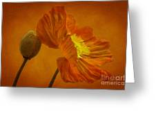 Flaming Beauty Greeting Card by Heiko Koehrer-Wagner