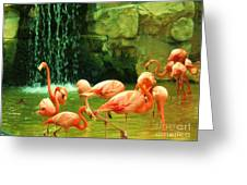 Flamingo Greeting Card by Esther Rowden