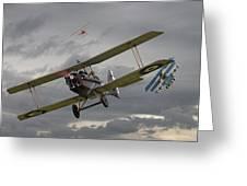 Flander's Skies Greeting Card by Pat Speirs