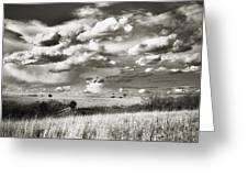 Flint Hills Prairie Greeting Card by Thomas Bomstad