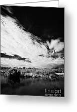 Flooded Grasslands And Mangrove Forest In The Florida Everglade Greeting Card by Joe Fox