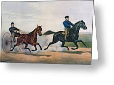 Flora Temple And Lancet Racing On The Centreville Course Greeting Card by Currier and Ives