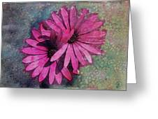 Floral Fiesta  Greeting Card by Variance Collections