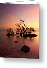 Florida Keys Sunset Greeting Card by Mike  Dawson