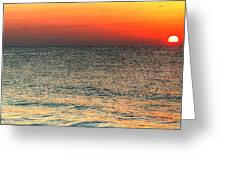 Florida Point Sunrise Greeting Card by Michael Thomas