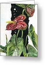 Flower Anthurium 01 Elena Yakubovich Greeting Card by Elena Yakubovich