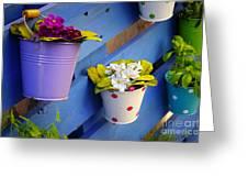 Flower Baskets Greeting Card by Carlos Caetano