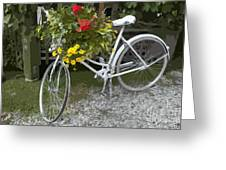 Flower Bike Greeting Card by Graham Foulkes