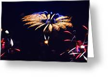 Flower Fireworks Greeting Card by Sandi OReilly