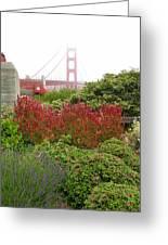Flower Garden At The Golden Gate Bridge Greeting Card by Connie Fox