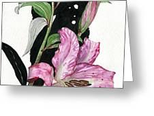 Flower Lily 02 Elena Yakubovich Greeting Card by Elena Yakubovich