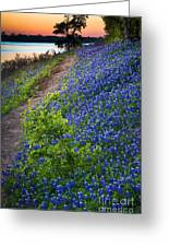 Flower Mound Greeting Card by Inge Johnsson