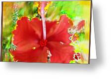 Flower Red Greeting Card by Nedunseralathan R