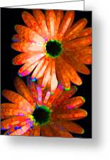 Flower Study 5 - Vibrant Orange By Sharon Cummings Greeting Card by Sharon Cummings