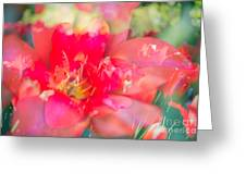 Flowers Bloom In Multiples Greeting Card by Sonja Quintero