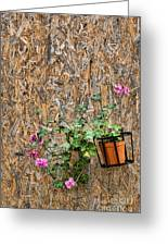 Flowers On Wall - Taromina Greeting Card by David Smith