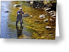 Fly Fishing For Trout Greeting Card by Nava  Thompson