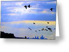 Fly Like The Wind Greeting Card by Robyn King