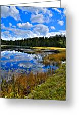 Fly Pond In The Adirondacks II Greeting Card by David Patterson