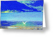 flying low Greeting Card by Hilde Widerberg