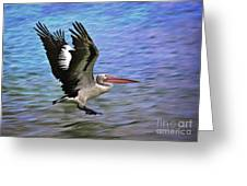 Flying Pelican 2 Greeting Card by Heng Tan