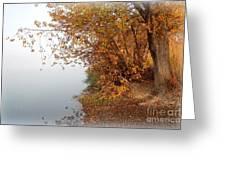 Foggy Autumn Riverbank Greeting Card by Carol Groenen